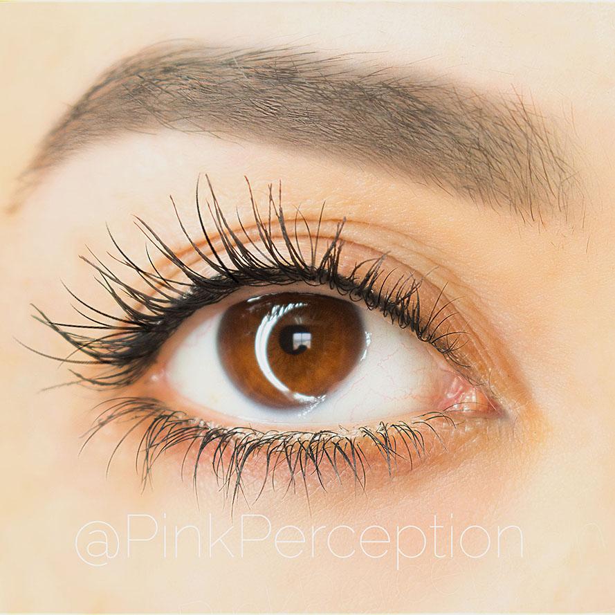 high caliber mascara sigma beauty
